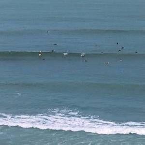Surf1234