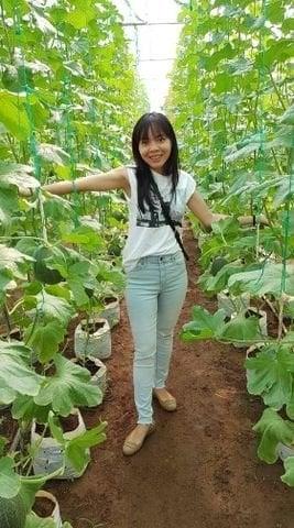 Phanh